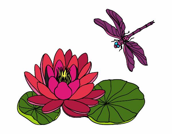 Dibujo De Flor De Loto Pintado Por Uxueee En Dibujosnet El Día 24