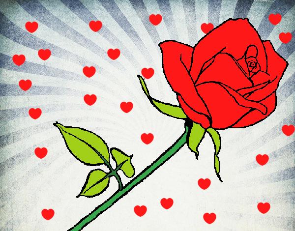 Dibujo De La Rosa Mas Bonita Pintado Por En Dibujos Net El Dia 29 04