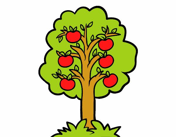 Dibujo De árbol De Manzanas Pintado Por En Dibujosnet El Día 02 05