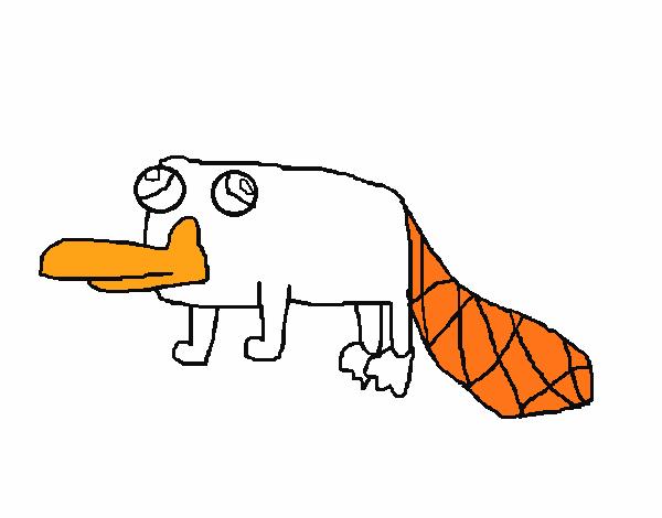 Dibujo de Perry el Ornitorrinco pintado por en Dibujos.net el día 12 ...