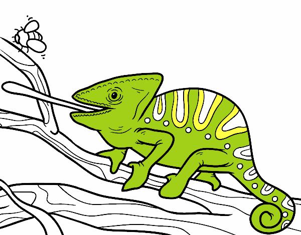 Dibujo de Un camaleón con la lengua fuera pintado por en Dibujos ...
