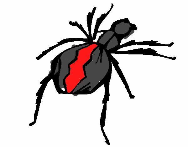 Dibujo de Araña viuda negra pintado por en Dibujos.net el día 21-09 ...