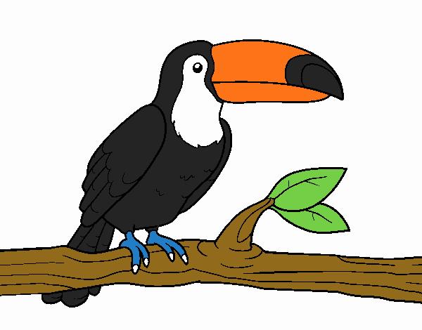 Dibujo De El Animal En Peligro De Extincion Pintado Por En Dibujos