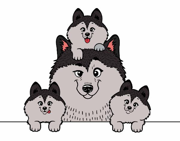 Dibujo de mis tres cachorritos pintado por en Dibujos.net el día 06 ...