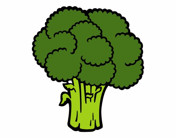 Dibujo De Verdura De Brócoli Pintado Por En Dibujos.net