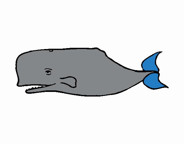 Dibujo de Ballena azul pintado por en Dibujos.net el día 09-09-17 a ...