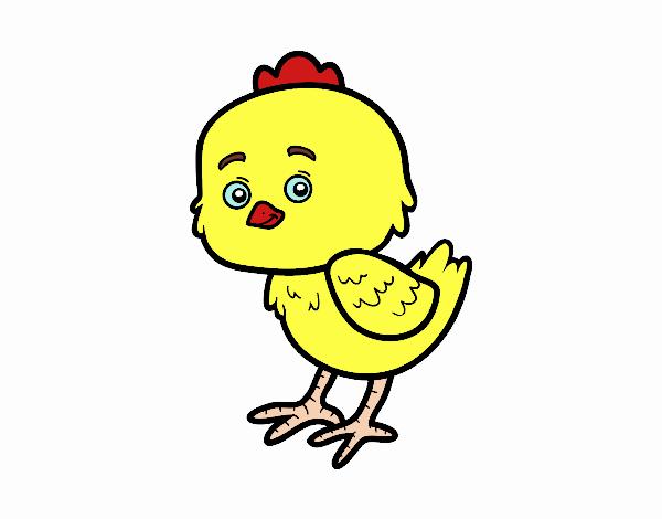 Dibujo de polli plli to lindo pintado por en Dibujos.net el día 14 ...