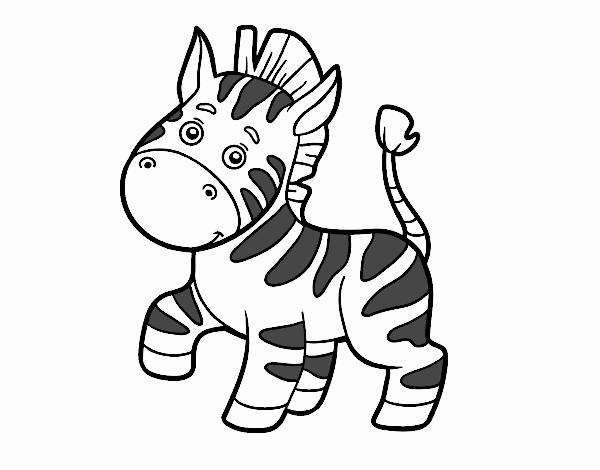 Dibujo de Una cebra africana pintado por en Dibujos.net el día 17-01 ...