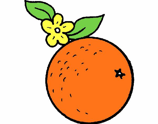 Dibujo De Naranja Pintado Por En Dibujos Net El Dia 24 01 18 A Las