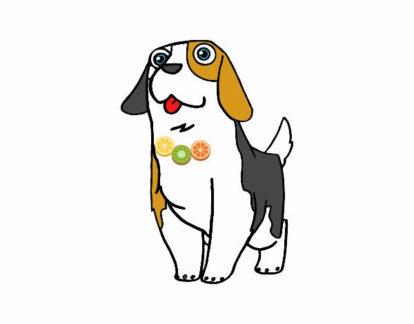 Dibujo de Perro San Bernardo joven pintado por en Dibujos.net el día ...