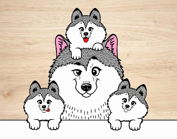 Dibujo de husky familia tierna pintado por en Dibujos.net el día 23 ...