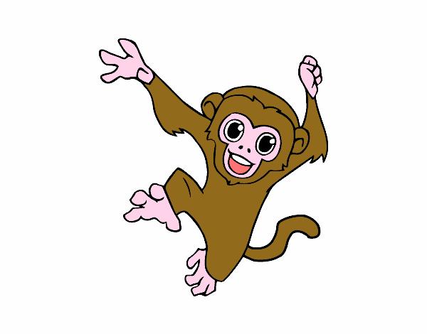 Dibujo de Mono capuchino bebé pintado por en Dibujos.net el día 27 ...