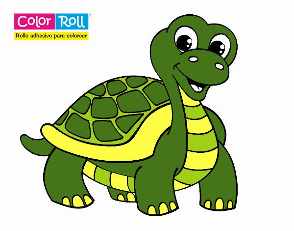 Dibujo De Tortuga Color Roll Pintado Por En Dibujosnet El Día 14 03