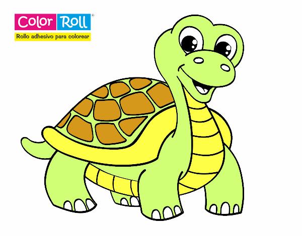 Dibujo De Tortuga Color Roll Pintado Por En Dibujosnet El Día 18 03