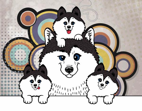 Dibujo de Familia Husky pintado por en Dibujos.net el día 08-04-18 a ...