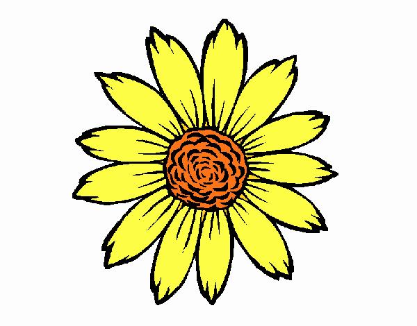 Dibujo De Girasol Pintado Por En Dibujosnet El Día 04 04 18 A Las