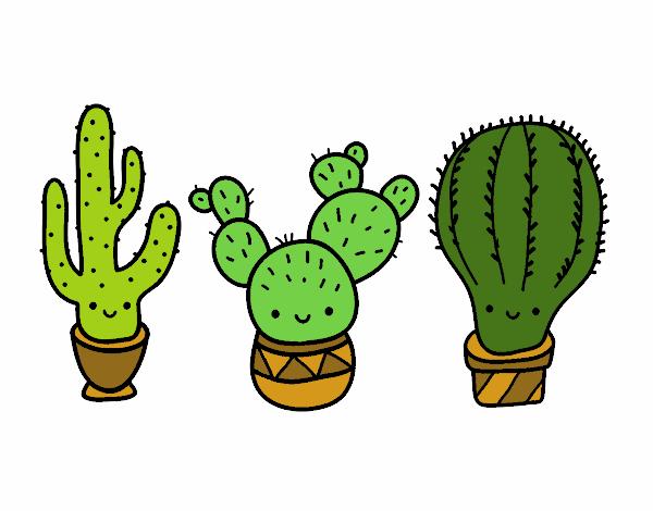 Dibujo de 3 mini cactus pintado por en Dibujos.net el día 14-04-18 a ...