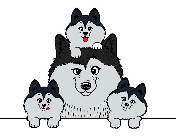 Dibujo de Familia Husky pintado por en Dibujos.net el día 13-04-18 a ...
