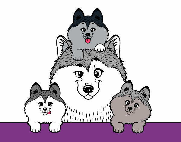 Dibujo de Familia Husky pintado por en Dibujos.net el día 18-04-18 a ...