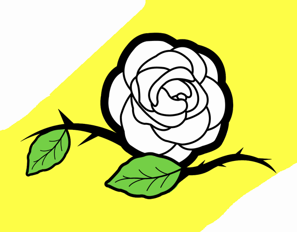 Dibujo De La Rosa De Guadalupe Pintado Por En Dibujosnet El Día 22