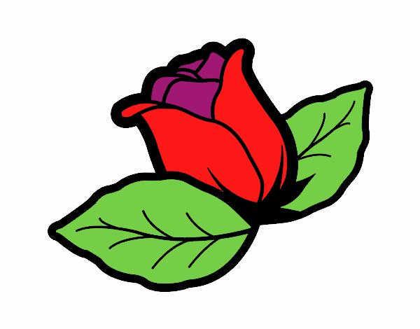Dibujo De Flor Roja Pintado Por En Dibujosnet El Día 21 05