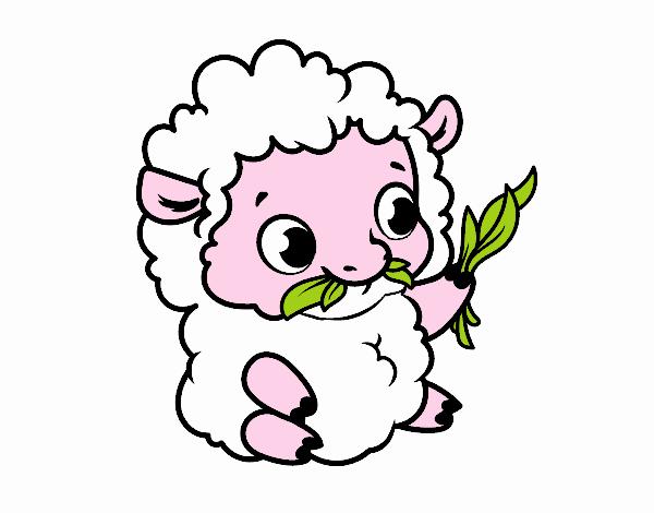Dibujo de Oveja bebé pintado por en Dibujos.net el día 29-05-18 a ...