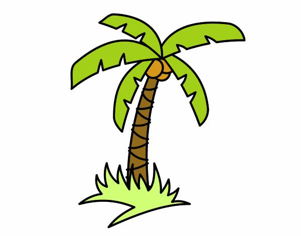 Dibujo de Palmera tropical pintado por en Dibujos.net el día 30-05 ...