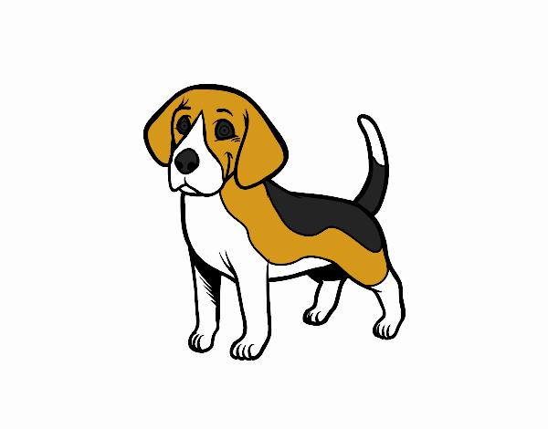 Lujo Beagle Para Colorear Imprimible Ideas - Páginas Para Colorear ...