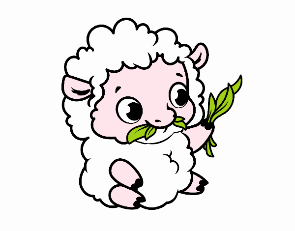 Dibujo de Oveja bebé pintado por en Dibujos.net el día 27-06-18 a ...
