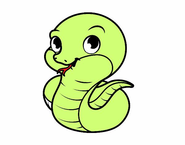 Dibujo De Serpiente Bebé Pintado Por En Dibujos Net El Día