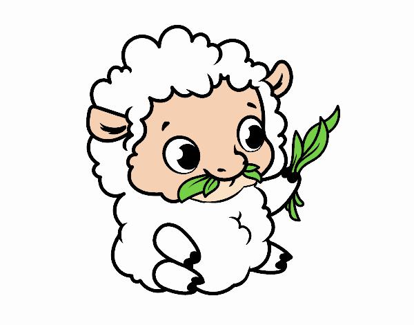 Dibujo De Oveja Bebé Pintado Por En Dibujos.net El Día