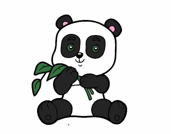 Dibujo De Un Oso Panda Pintado Por En Dibujosnet El Día 01 09 18 A