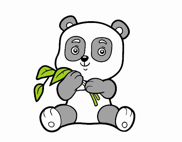 Dibujo De Un Oso Panda Pintado Por En Dibujosnet El Día 11
