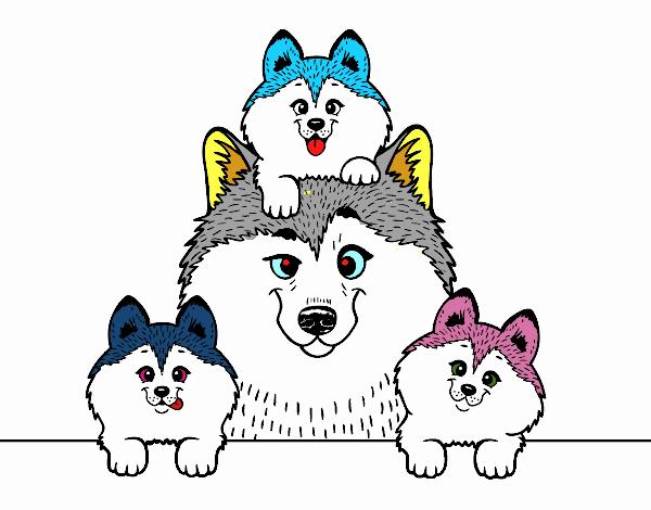 Dibujo de Familia Husky pintado por en Dibujos.net el día 05-10-18 a ...