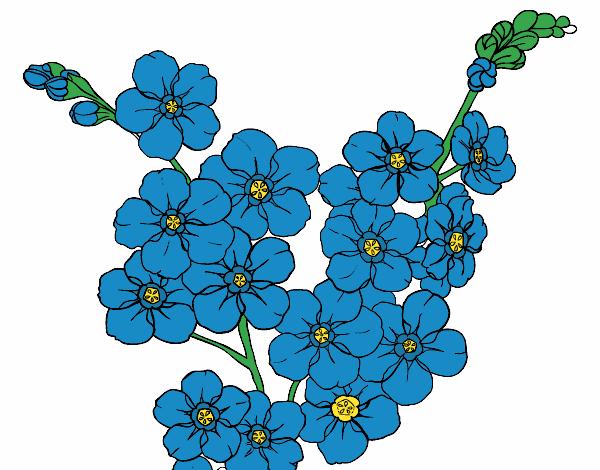 Dibujo De Flor De Cerezo Pintado Por En Dibujosnet El Día 24 10 18