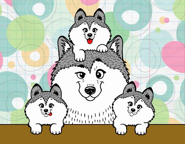 Dibujo de Familia Husky pintado por en Dibujos.net el día 30-10-18 a ...