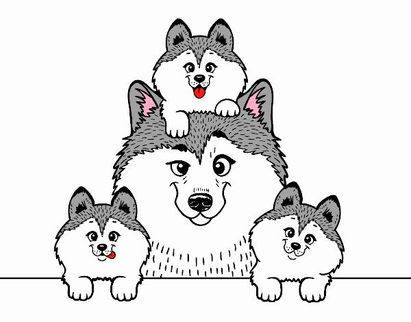 Dibujo de Familia Husky pintado por en Dibujos.net el día 31-10-18 a ...