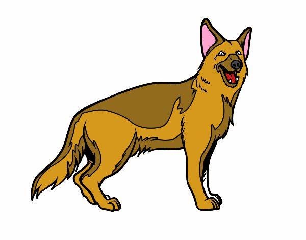 Dibujos Para Colorear De Perros Pastor Aleman