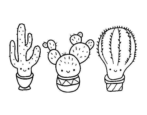 Dibujo De 3 Mini Cactus Para Colorear Dibujosnet