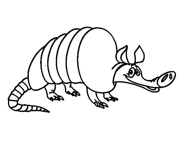 Dibujo de Armadillo adulto para Colorear - Dibujos.net