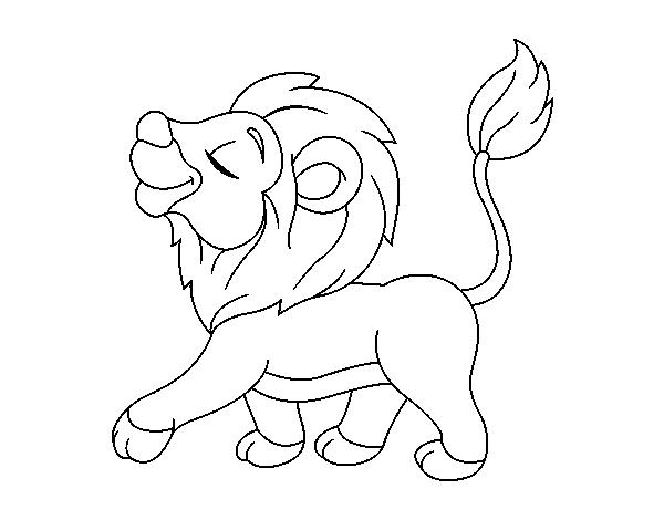 Dibujo De Cachorro De León Para Colorear Dibujosnet