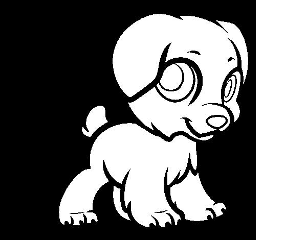 Dibujo de Cachorro feliz para Colorear - Dibujos.net