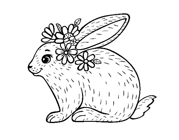 Dibujo de Conejo primaveral para Colorear - Dibujos.net