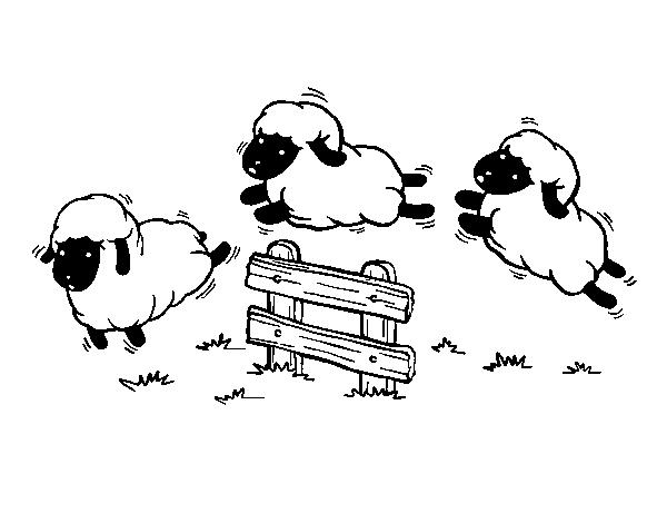 Dibujo de Contar ovejas para Colorear - Dibujos.net