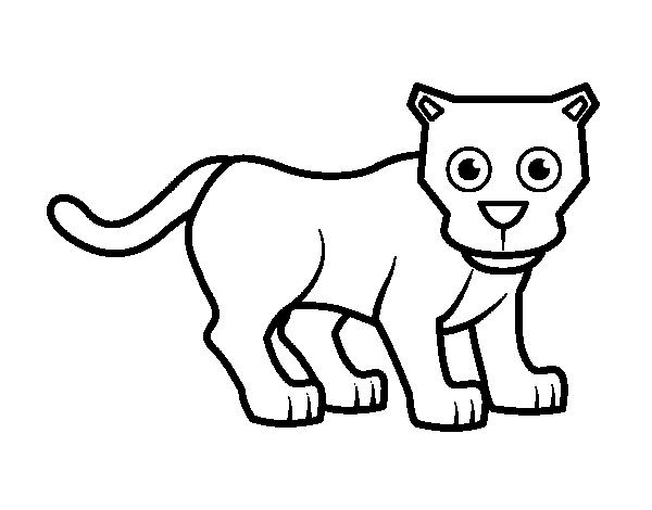 Dibujo de Cría de pantera para Colorear - Dibujos.net
