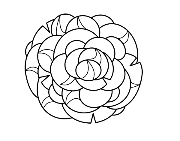 Dibujo de Crisantemo para Colorear - Dibujos.net
