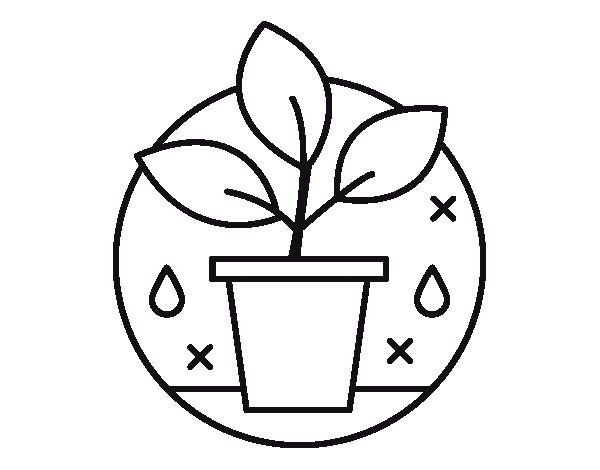 Dibujo de Cultivo Ecológico para Colorear - Dibujos.net