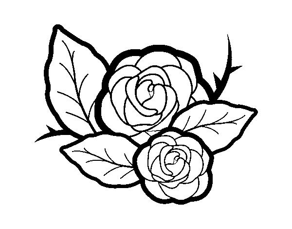 Dibujo de Dos rosas para Colorear - Dibujos.net