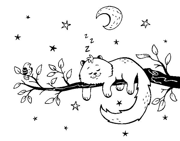 Dibujo de El gato y la luna para Colorear - Dibujos.net