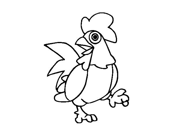 Dibujo de Gallo de corral para Colorear - Dibujos.net
